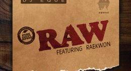 DJ EQue - RAW ft. Raekwon [audio]