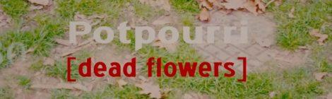 Rapper Big Pooh - Potpourri (Dead Flowers) ft. Finian St. Omer II [video]