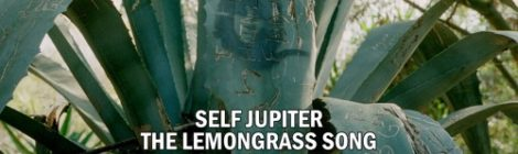 "Self Jupiter ""The Lemongrass Song"" [audio]"