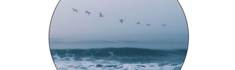 TUAMIE - Ocean Winds [EP]