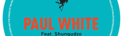 Paul White - Ice Cream Man feat. Shungdzo [audio]