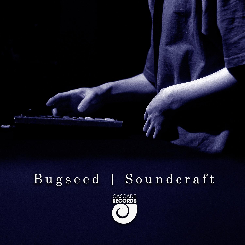Bugseed - Soundcraft (Teaser) [audio]
