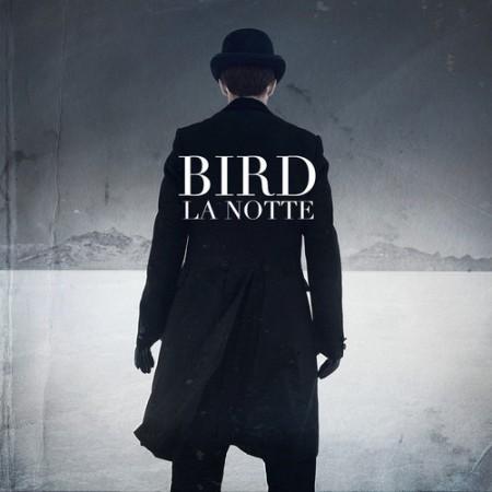 birdLaNotte