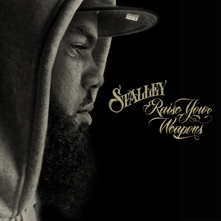 Stalley - Raise Your Weapons Art