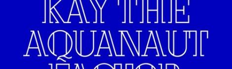 Factor - Fvck You ft. Kay the Aquanaut [audio]