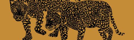 Dillon & Paten Locke - Food Chain [album] (ft. Von Pea, Willie Evans Jr, Boog Brown, Dres, Homeboy Sandman, J-Live & more)