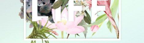 Ivy Sole - Life ft. Dave B (prod. Kam DeLa) [audio]