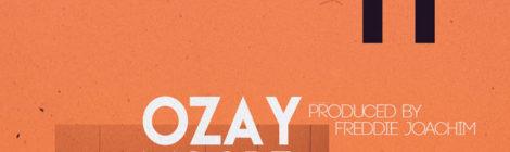 Ozay Moore - Doin It (prod by Freddie Joachim) [single]