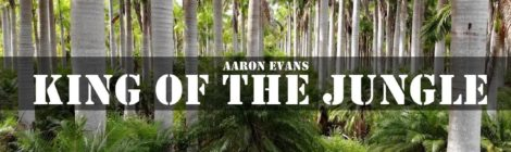 Aaron Evans - King Of The Jungle [video]