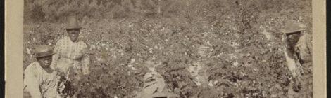"Royce 5'9"" - Field Negro [audio]"