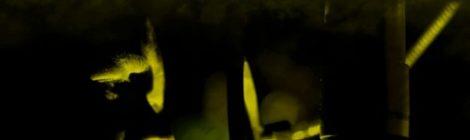 Bumpy Knuckles (aka Freddie Foxxx) - Leaks 3