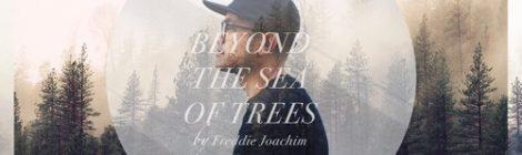 Freddie Joachim - Beyond The Sea of Trees [album]