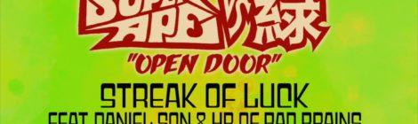 Lee Scratch Perry & Mr. Green - Streak of Luck (feat. Daniel Son & HR of Bad Brains)