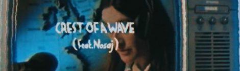 Kid Acne - CREST OF A WAVE feat. Nosaj (prod. Spectacular Diagnostics) Official Video